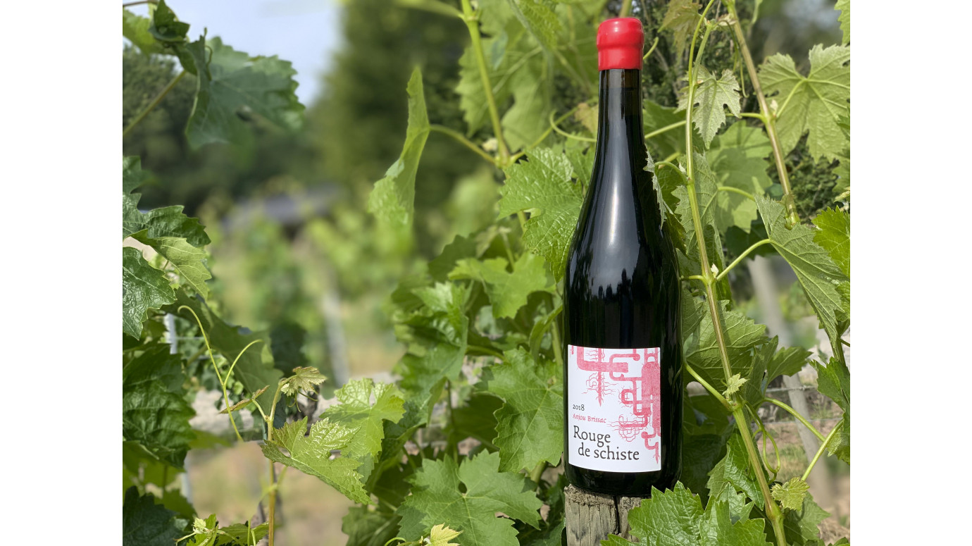 Rouge de schiste 2018 : a new vintage at Terra Vita Vinum...